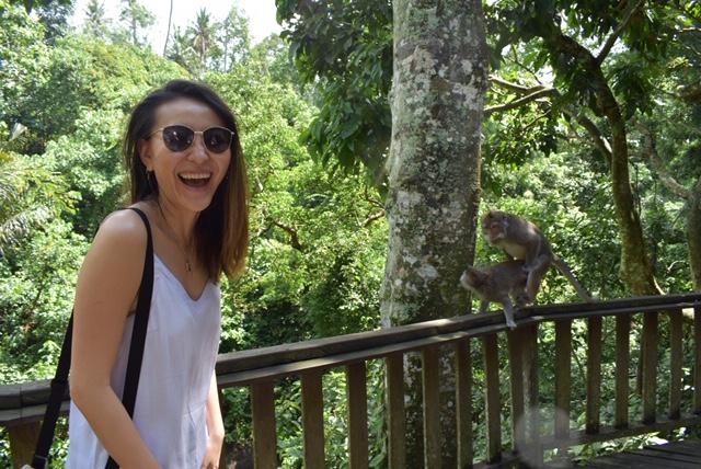 Monkeys of Monkey Forest